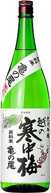 期間限定お試し価格 越の寒中梅亀の尾純米吟醸1.8L 限定品