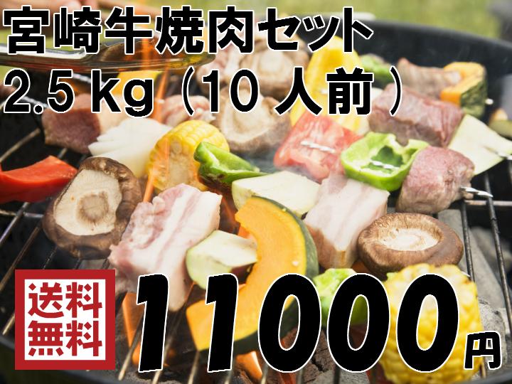 【送料無料】宮崎牛焼肉セット 2.5kg(10人前)