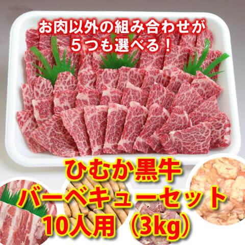 ひむか黒牛バーベキューワイワイセット10人用(3kg)【送料無料】(肉、セット、大人数、パーティー、豚肉、鶏肉、ホルモン、焼肉)