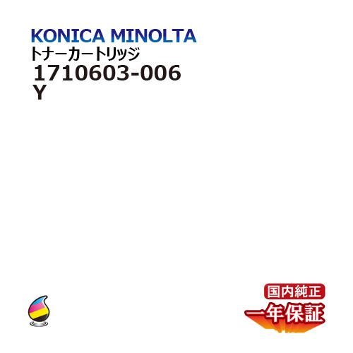 Studio Catalog
