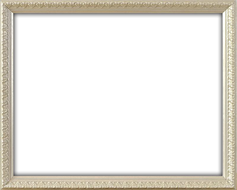 ラーソン お見舞い ジュール お見舞い デッサン額縁 シャルム 銀 A3 サイズ ☆前面アクリル仕様☆ 420×297mm
