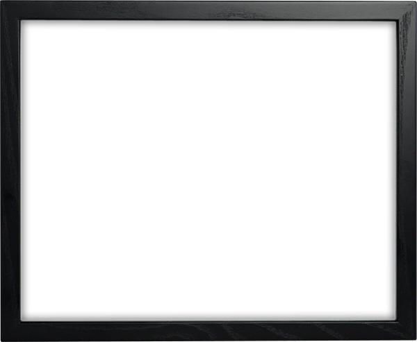 最高の品質 デッサン額縁 D816/ブラック 大全紙サイズ(727×545mm) ☆前面アクリル仕様☆【ラーソン・ジュール】【絵画/壁掛け/インテリア/玄関/アートフレーム】, ガーデン資材はエクステルホームズ:dc27be27 --- bober-stom.ru