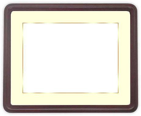 写真用額縁 D717/セピア A2(594×420mm)専用【写真額】☆前面アクリル仕様☆マット付き(金色細縁付き)【絵画/壁掛け/インテリア/玄関/アートフレーム】