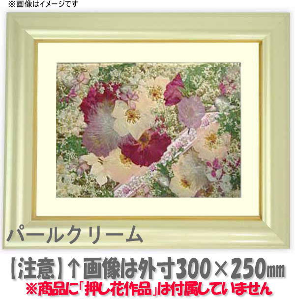 Naito Frame Rakuten Global Market Pressed Flower Picture Frame