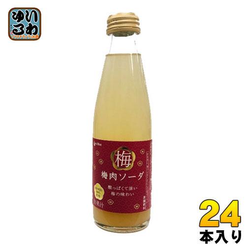 コーラルブルー 梅肉ソーダ 200ml 瓶 24本入〔紀州産梅 梅ソーダ うめ ウメ 炭酸〕