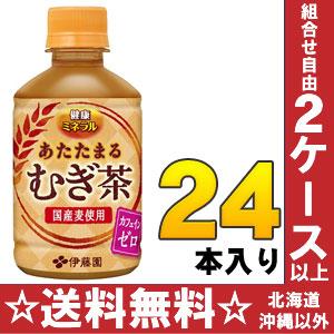 日本紫藤花园热健康矿物 mugicha 275 毫升 pet 24 件 [零咖啡因温暖大麦茶 mugicha 热。