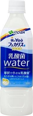 500 ml of 24 Yoo lactic acid bacterium water pet Motoiri [drink yogurt functional milk-related drink tea Bo feh chalice bacteria] of the Sono Ito dynasty
