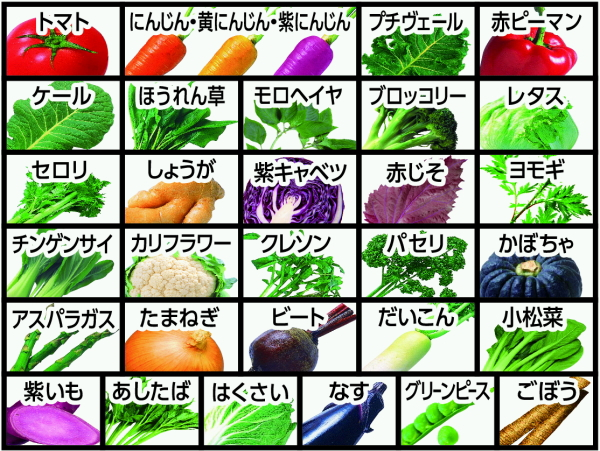 One 24 *3 125 ml of more than one Kagome vegetables day this concentration paper pack Motoiri bulk buying [vegetable daily this vegetables juice salt no addition sugar nonuse]