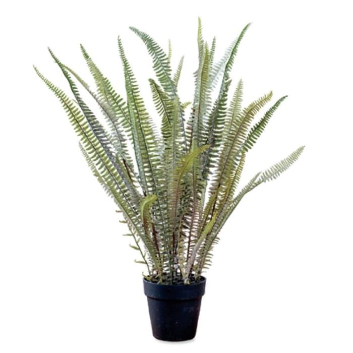 日当たり 水やり不要 手間なしグリーン ボストンファーン 日本未発売 安心の定価販売 観葉植物 人工植物 フェイクグリーン