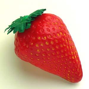安心の日本製 プレゼントにもおすすめ フルーツシェーカー 正規店 お子さまの情操教育にも 振って楽しい イチゴ 期間限定今なら送料無料
