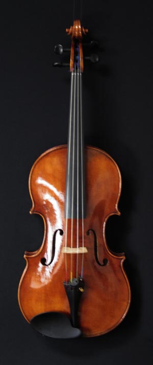 Ritz Iwata Amsterdam 2006 Viola 42.5 cm