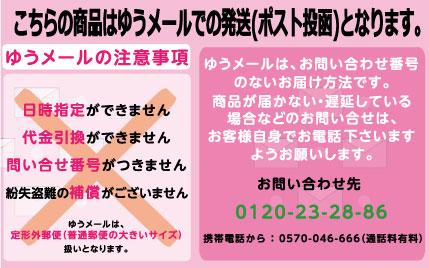 デザイン ドッグ ステッカー 【パピヨンB】【Lサイズ】