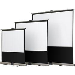 カシオ計算機 ポータブルスクリーン YN-80 メーカー在庫品
