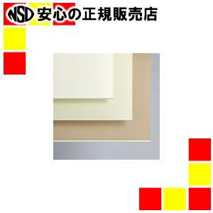 【キャッシュレス5%還元】《立川機工》 防炎ロールスクリーンTR-3148 W1800×H1800