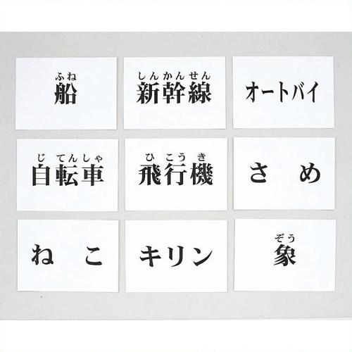 《DLM》 言語訓練文字カード 生物・乗物 2214S-M 2214S-M