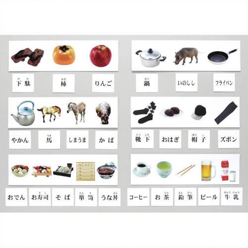 《DLM》 弁別組合せ学習カードセット KK1300 KK1300
