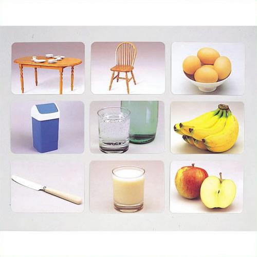 《DLM》 言語訓練写真カード2 食物と家具1245S 1245S
