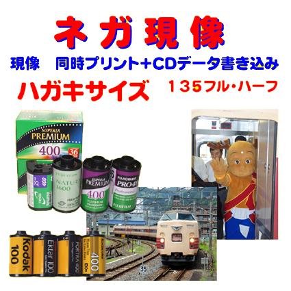ネガ現像 同時プリント CDデータ書き込み FUJI Kodak AGFA 現金特価 Lomo で撮った ハガキサイズ フィルムから 135 ギフト プレゼント ご褒美 1本から受付 APS