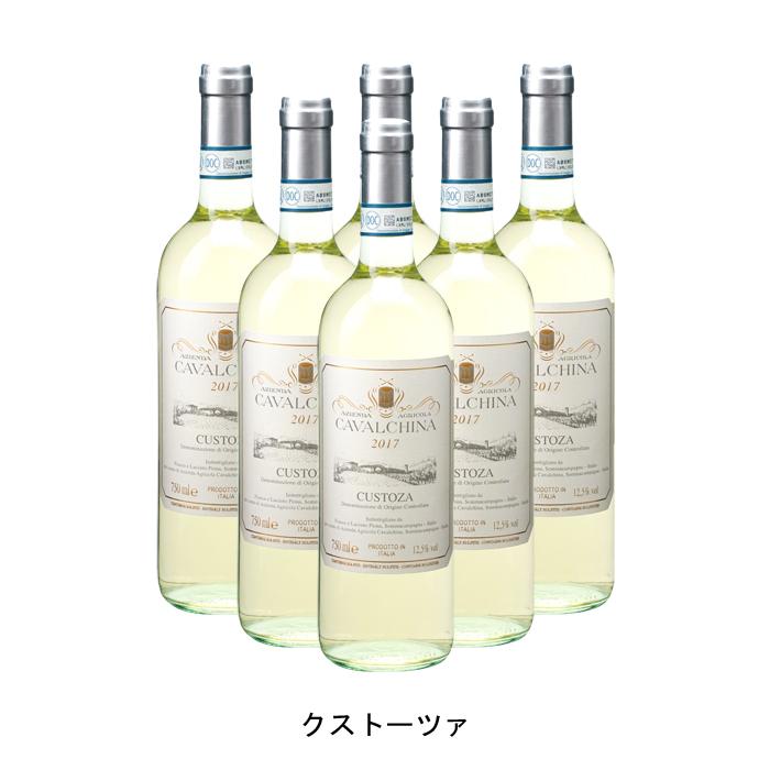 最新のデザイン [ 6本 まとめ買い ] クストーツァ ( カヴァルキーナ ) 2019年 イタリア 白ワイン 辛口 750ml×6本, ユメカインテリア(Yumeka) 7b8f801c