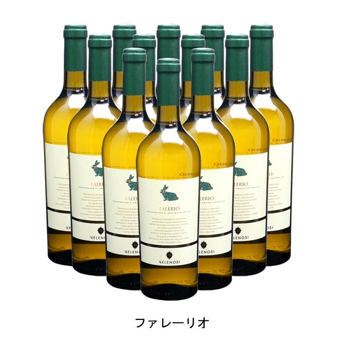 名刺代わりのワイン 12本 まとめ買い ファレーリオ ヴェレノージ 辛口 爆売り 2019年 イタリア 白ワイン 750ml×12本 最安値挑戦