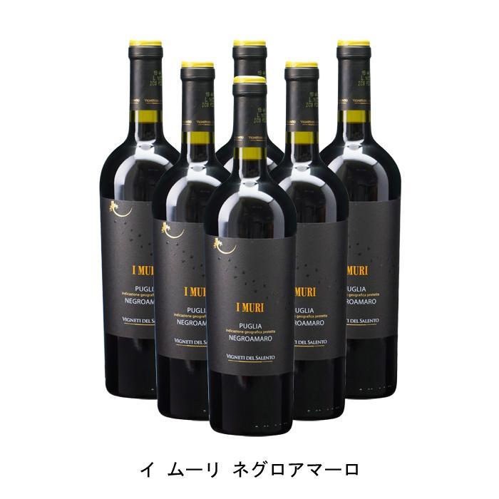 このワインのコストパフォーマンスは反則だと思う 6本まとめ買い 高い素材 イ ムーリ ショップ ネグロアマーロ 2019年 ヴィニエティ デル 赤ワイン イタリア赤ワイン イタリア フルボディ イタリアワイン サレント 750ml プーリア