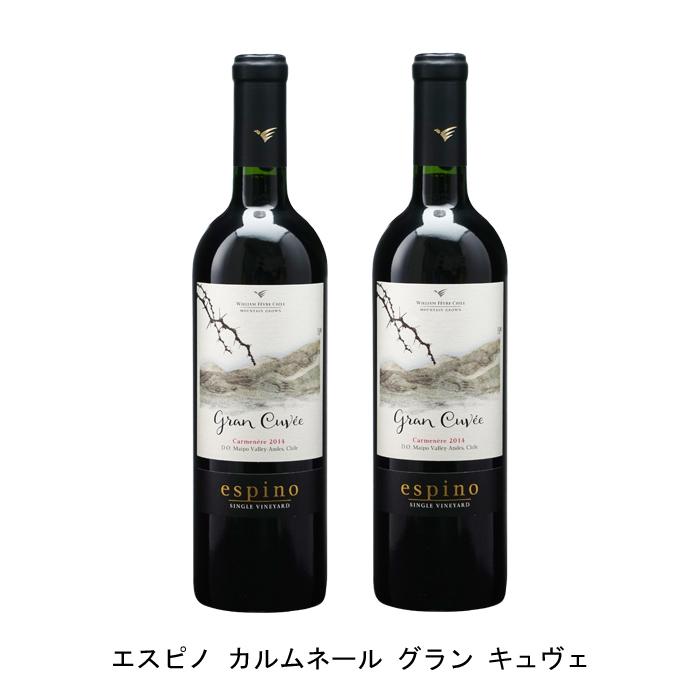 なめらかでエレガントの熟成ワイン 2本まとめ買い エスピノ カルムネール グラン キュヴェ 2015年 ビーニャ ウィリアム フェーヴル お洒落 チリ マイポ チリワイン チリ赤ワイン フルボディ ヴァレー 赤ワイン カルメネール 本日限定 750ml