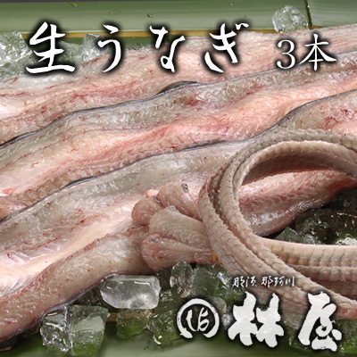 林屋の鰻はすべて国産 開店祝い 生うなぎ 3本 出荷 骨付き 特製たれ 肝