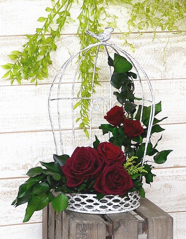 プリザーブドフラワー小鳥のさえずり誕生祝い、母の日、父の日、敬老の日、結婚祝い