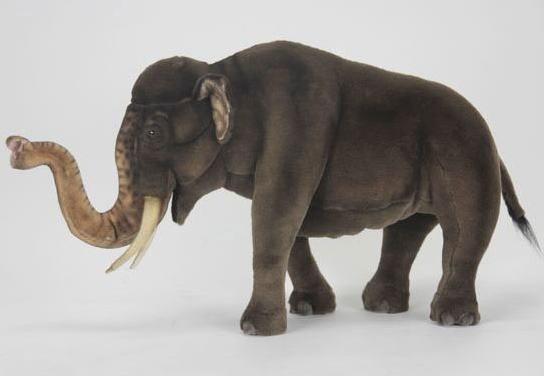 【HANSA】リアルぬいぐるみアジアゾウ 63cm