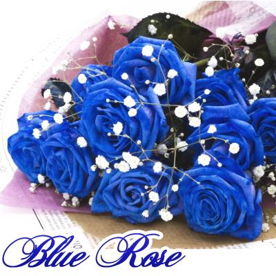 ブルーローズとかすみ草の花束 数量は多 ブルーローズ 青いバラ 花束 ブルーローズの花束 オランダ産 アイテム勢ぞろい 誕生日 お祝い お礼 本数追加OK かすみ草 花 開店祝い 結婚記念日 フラワー ブルーローズ10本