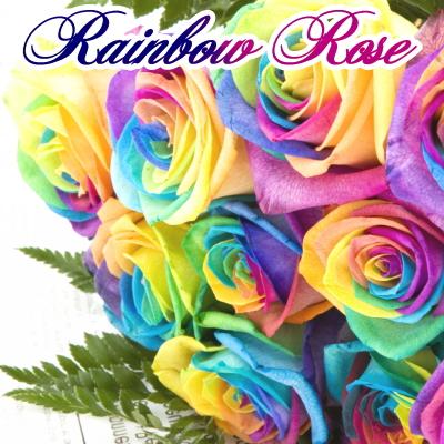 レインボーローズ10本の花束 グリーン添え レインボーローズ レインボーバラ 日本全国 送料無料 花束 レインボーローズの花束 虹色のバラ 大人気 サプライズ 誕生日 お祝い オランダ産の最高級品質 花