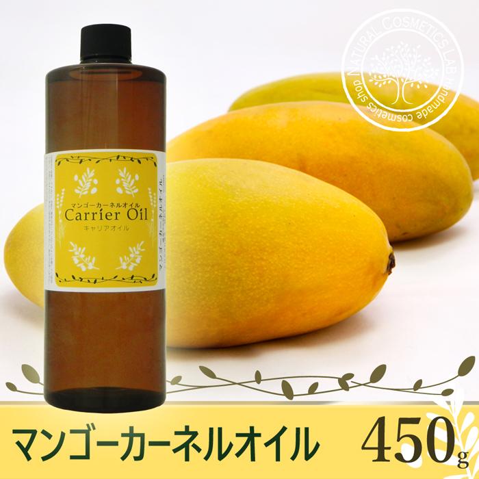 芒果核石油450g