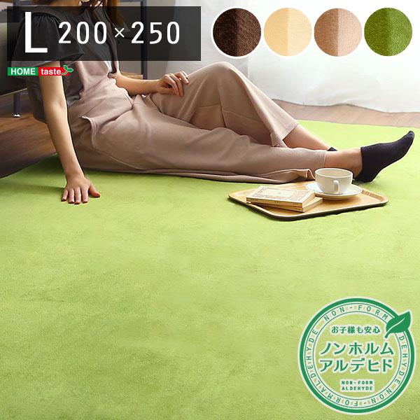 インテリア 寝具 収納 カーペット 未使用 ラグ 引出物 ラグマットLサイズ 200×250cm ナルトレア Naltorea マット