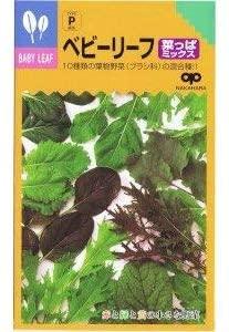 送料無料 美味しいベビーリーフ菜っぱミックス 種 ベビーリーフ 格安 価格でご提供いたします 日本製 郵便配送商品 菜っぱミックス 20ml 5袋セット