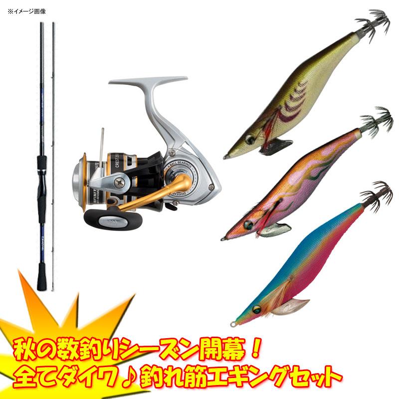 ダイワ(Daiwa) 秋の数釣りシーズン開幕!全てダイワ♪釣れ筋エギングセット 【大型商品】