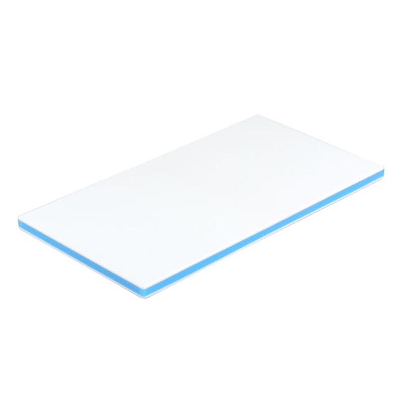 三洋化成(sanyokasei) CKB-20LL 抗菌業務用まな板 LL ブルー CKB-20LL