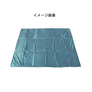 ogawa(小川キャンパル) グランドマット2828 3843