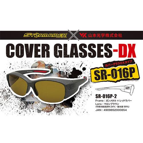 ストームライダー(STORM RIDER) SR-016-P COVER GLASSES-DX ガンメタル マロンブラウン