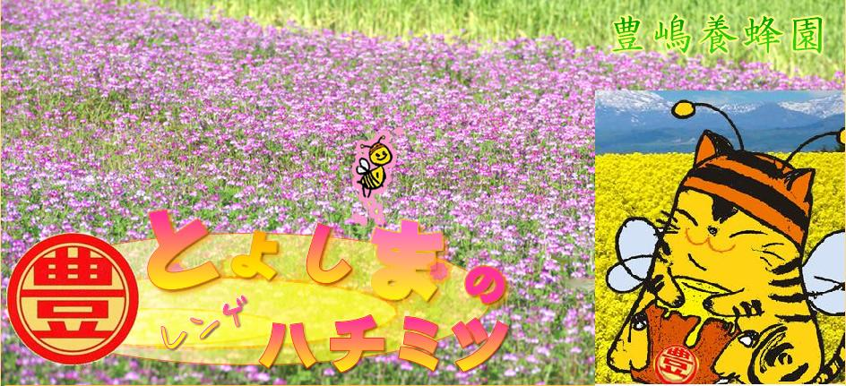 豊嶋養蜂園:自家生産のおいしいハチミツを販売しております!