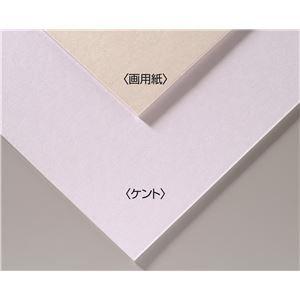 【おまとめ30個セット】 アーテック A&Bオリジナルアートボード B3画用紙 143301 4548030433017