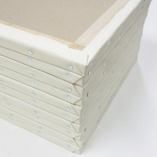 【おまとめ30個セット】 アーテック KF張キャンバス F4(綿化繊混紡) 131217 4560105940220