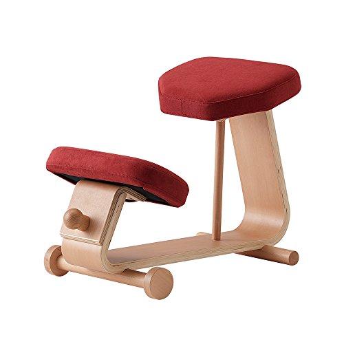 sled chair 2 SLED-2(RD) SLED-2-RD 4933178106013 株式会社 弘益