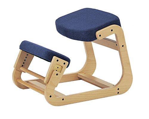 sled chair 1 SLED-1(BL) SLED-1-BL 4933178075111 株式会社 弘益