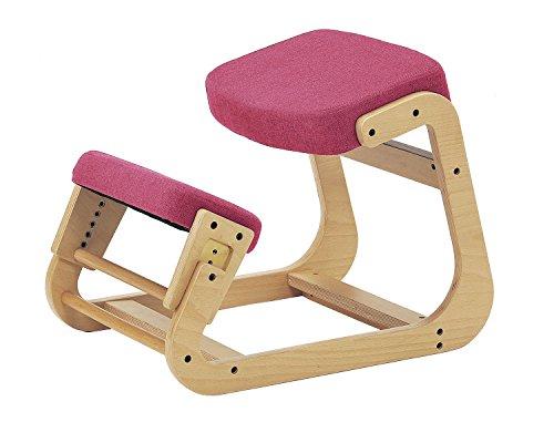 sled chair 1 SLED-1(PK) SLED-1-PK 4933178075159 株式会社 弘益
