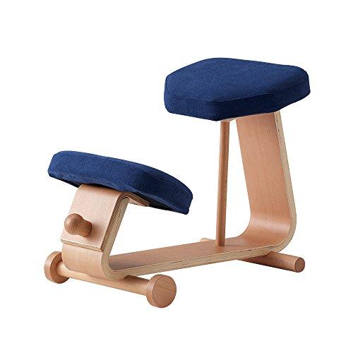 sled chair 2 SLED-2(NV) SLED-2-NV 4933178106006 株式会社 弘益