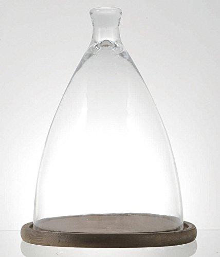 GLASS CLOCHE L SG1950-2WS 4997337195027 ダルトン