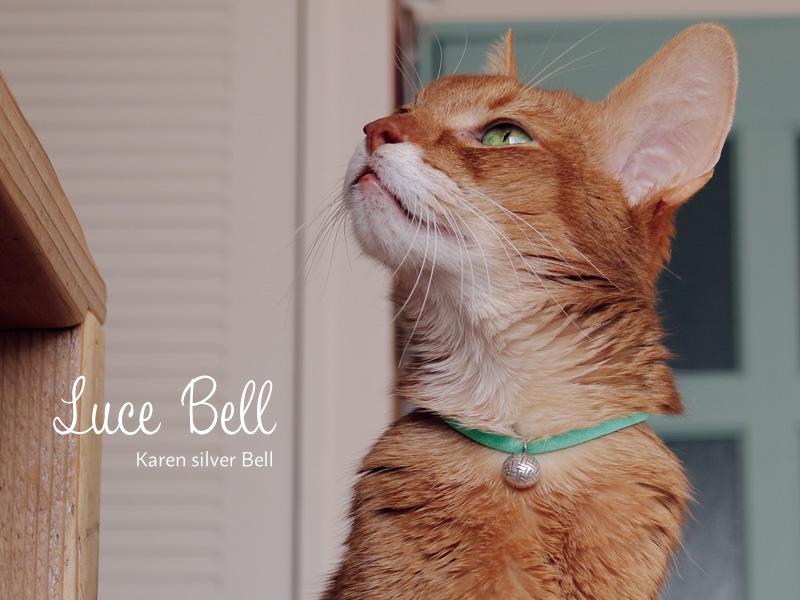 着けているのを忘れる首輪に鈴が付きました 猫さんの着け心地を考えて作ったやわらかい軽量首輪です 予約販売品 30cmまでサイズ調整可能 安全バックルで安心です 送料無料 necono 永遠の定番モデル 猫 首輪 Luce Bell ルーチェ ベル ラタン サイズ調整 10-30cm 鈴 ピンク 猫用品 ボール 日本製 全5色 おしゃれ 軽量 子猫 安全 銀