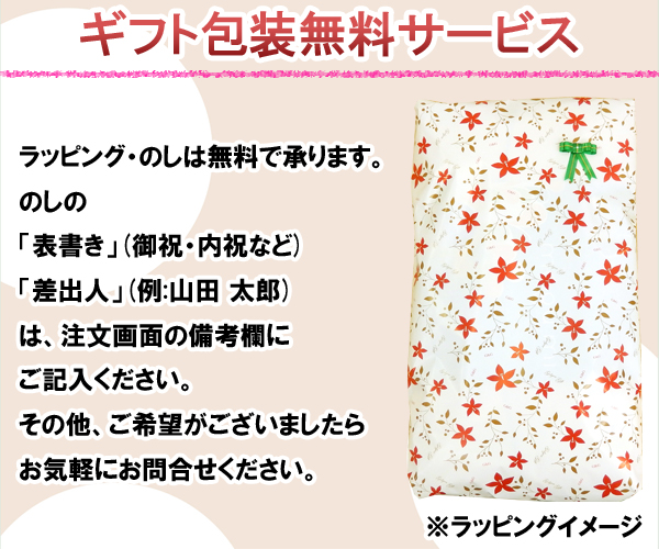 Ecology grace - Megumi - choice pillow 35 x 55 cm height! All-season gift washable