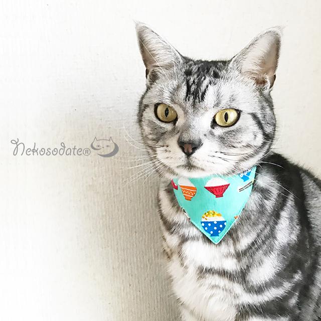 猫の首輪 ネコソダテ 軽量でつけ心地抜群の安全首輪 首輪嫌いの猫様も安心 正規店 猫 首輪 バンダナ風セーフティ首輪 当店は最高な サービスを提供します ごはんいっぱい柄 コットン製 コットン かわいい デザイン おしゃれ 国産 安全首輪