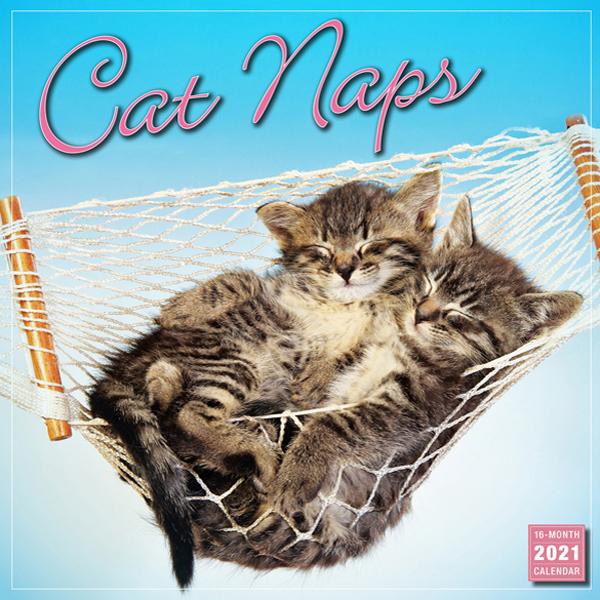 2021年版壁掛けカレンダー 1冊のみメール便可 日時指定 2021猫カレンダー 居眠りニャンコ 新品未使用